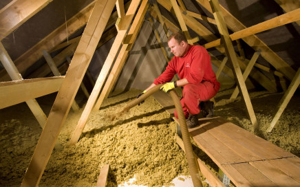 IP Polná dřevo a styvby